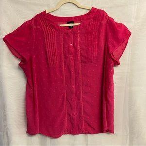 🛍3/$25 Torrid sheer button up blouse